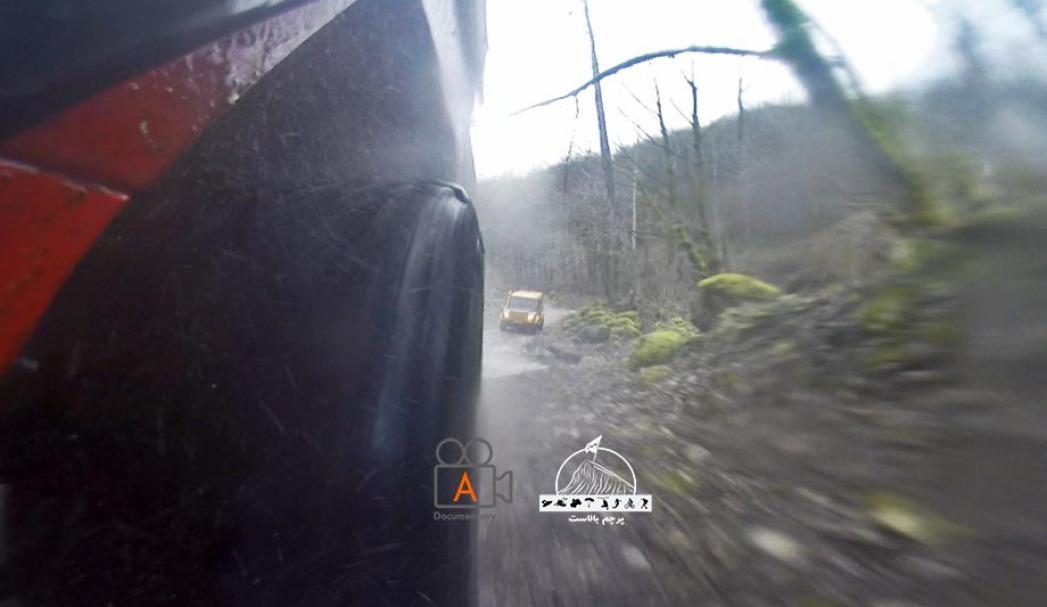 عبور با سرعت از میان جنگل