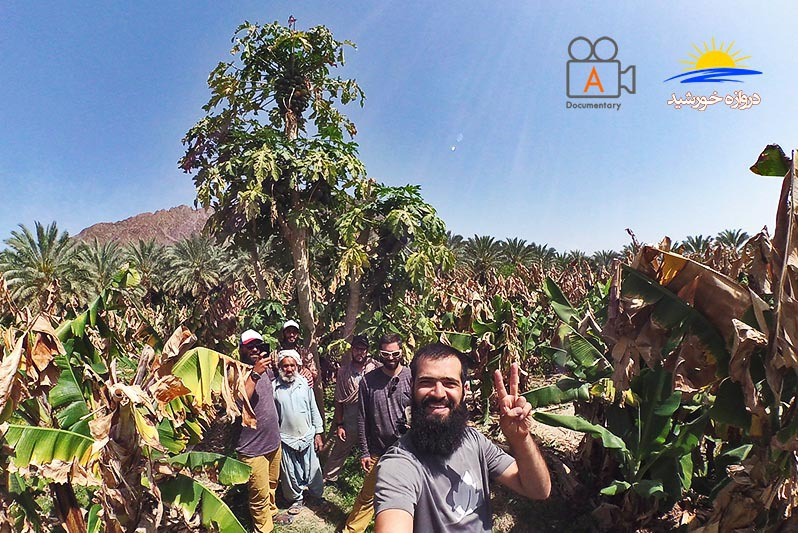 باغ میوه های استوایی کیشکور